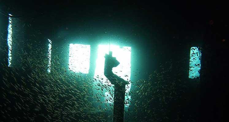 Photo of Milyarlarca dolarlık altın taşıyan batık gemi bulundu