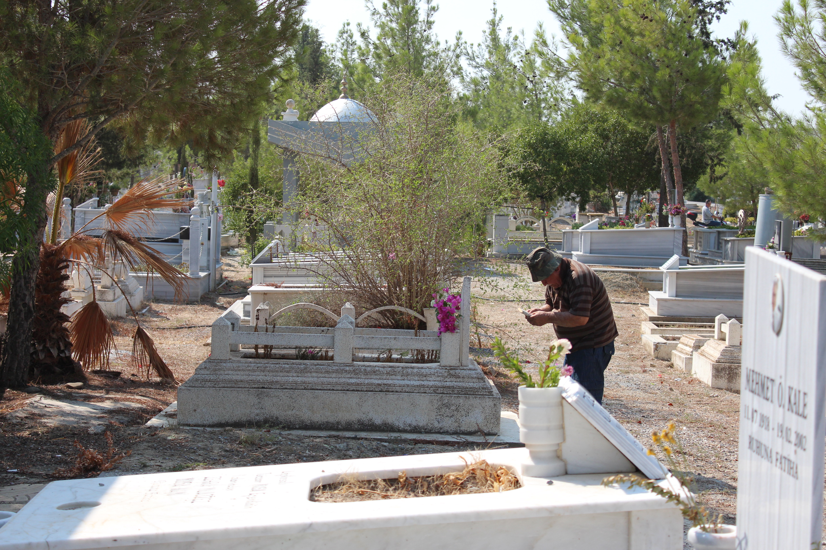 Dikkat çeken şey Don Mezarlığı
