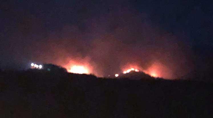 Photo of Dillirga bölgesindeki yangın kontrol altına alındı