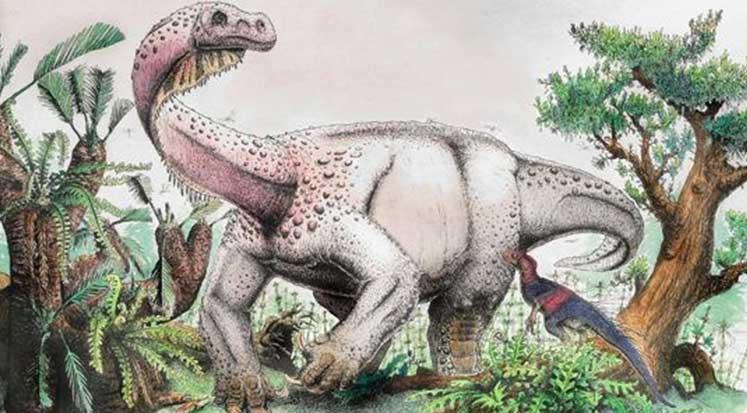 Photo of Afrika'da yeni dinozor türü keşfedildi