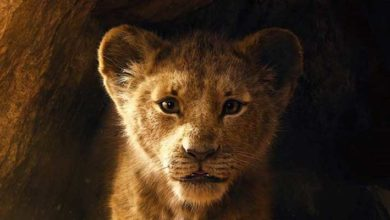 Photo of Aslan Kral (The Lion King) filminden ilk fragman geldi