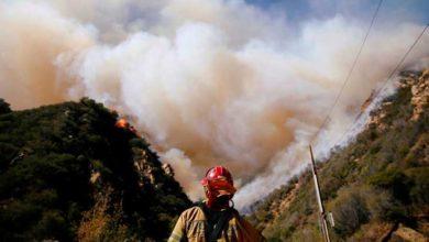 Photo of California yangınla boğuşuyor: 42 ölü