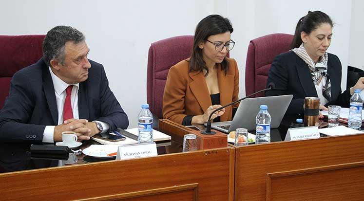 Cumhuriyet Meclisi İdari, Kamu ve Sağlık İşleri Komitesi