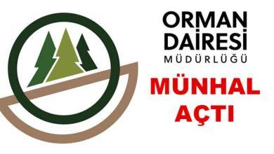 Photo of Orman Dairesi'nden münhal