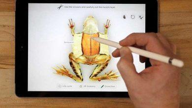 Photo of ABD'de 3 yaşındaki çocuk iPad'i etkisizleştirdi: Yeni deneme 50 yıl sonra