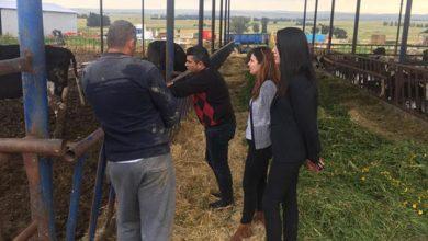 Photo of Hayvancılık Dairesi Vadili'de eğitim çalışması düzenledi