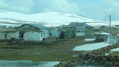 Photo of Çalışkan insanların karlı yurdu: Boğatepe Köyü