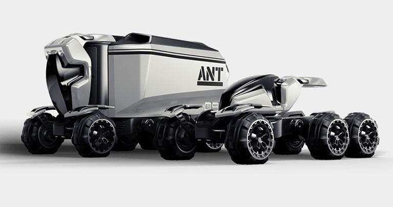 Ferox Ant