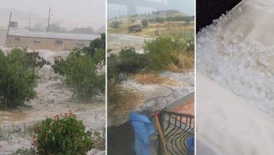Photo of Tarım Dairesi hava koşullarından kaynaklanan zararla ilgili incelemede bulunacak