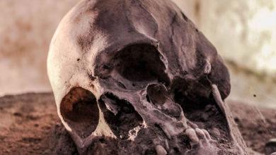 Photo of Yunanistan'da en eski insanların kalıntıları bulundu
