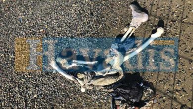 Photo of Sahilde iskelet bulundu