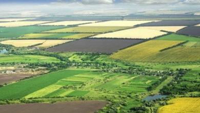 Photo of Tarımsal kira müracaat alımları 31 Temmuz'a kadar uzatıldı