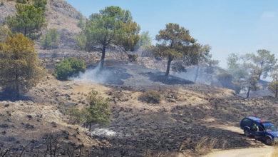 Photo of Yedidalga'da yangın