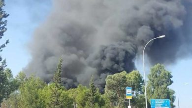 Photo of Güney Lefkoşa'da fabrika yandı