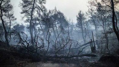 Photo of Yangın nedeniyle yüzlerce kişi tahliye edildi
