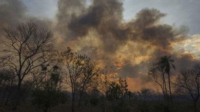 Photo of Amazonlarda hava kirliliği artıyor