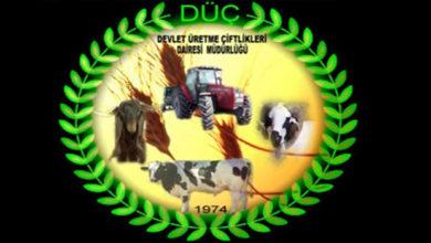 Photo of DÜÇ arazilerinden kiralamaya hak kazanan üreticiler 14 Kasım'a kadar sözleşmelerini imzalayabilecek