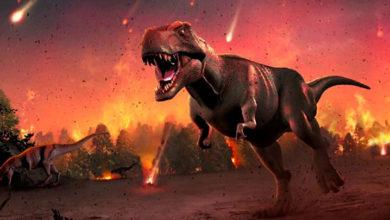 Photo of Araştırmacılar, dinozor sonrası bilinmeyen döneme ait izleri taşıyan fosiller buldular