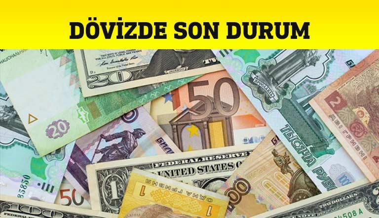 Dolar Euro Strelin Döviz
