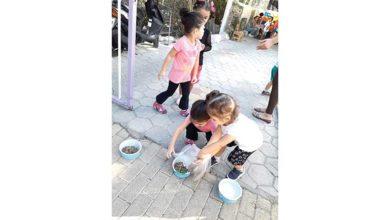 Photo of Montessori çocukları bir harika