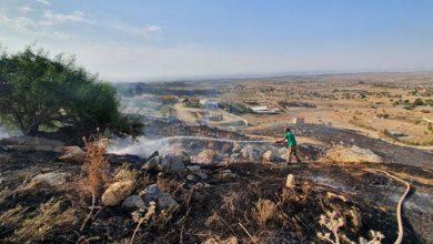Photo of Taşkent Köyünde çıkan yangın korkuttu