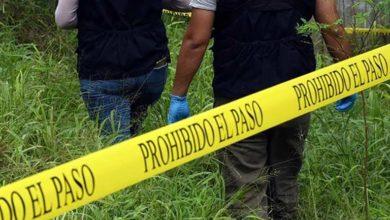 Photo of Meksika'da poşetlerde 12 kişiye ait ceset parçaları bulundu