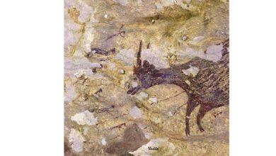 Photo of Dünyanın en eski mağara resmi Endonezya'da bulundu