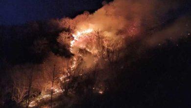 Photo of Karadeniz'de 60'tan fazla noktada yangın çıktı