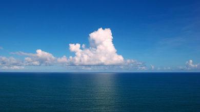 Photo of Okyanuslardaki oksijen oranı yüzde 2 azaldı