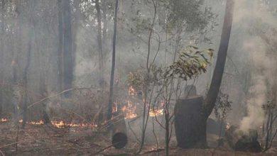 Photo of Avustralya'da sıcaklıkların düşmesiyle yangınların bir kısmı kontrol altına alındı