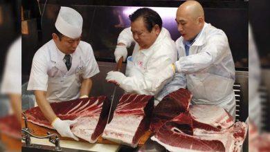 Photo of Bir balık, açık artırmada 11 milyon liraya satıldı