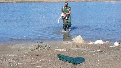 Photo of Esrarengiz ölümün nedeni araştırılıyor