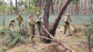 Photo of Avustralyalı askerler yangından kurtarılan koalalara bakıyor