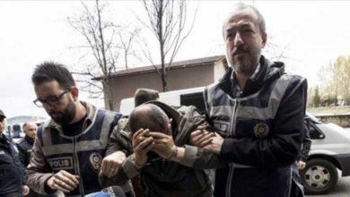 Photo of Türkiye'de köpek katliamına 10'ar yıl hapislik