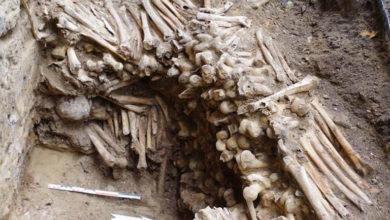 Photo of Belçika'daki katedralin altında insan kemiği ve kafatasından yapılmış duvarlar keşfedildi