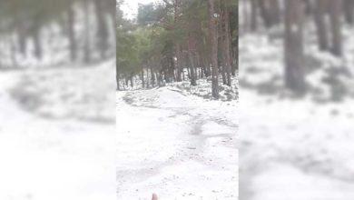 Photo of Yılın ilk karı Görneç'e düştü