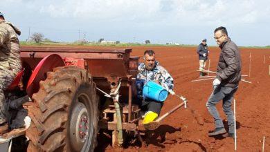 Photo of Patates adaptasyon deneme ekimi yapıldı
