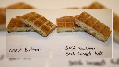 Photo of Bilim insanları böceklerden elde ettikleri yağ ile yemek yaptılar