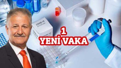Photo of Pilli: 1 yeni vaka