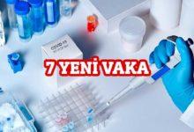 Photo of Pilli: 7 yeni vaka