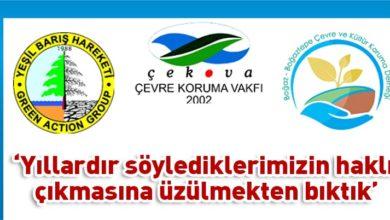 Photo of Çevre örgütlerinden 28 maddelik 'manifesto'