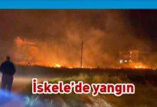 Photo of Bir yangında İskele'de