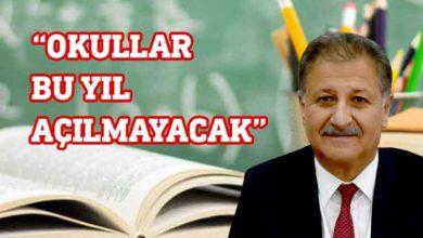 Photo of Pilli: Eğitim bu yıl başlamayacak
