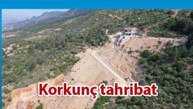Photo of Karşıyaka'da yamaç ve dağ yüzeyinde tarumar
