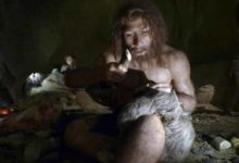Photo of Neandertallerin alet yapımında kullandıkları kemiklerde neye dikkat ettiği ortaya çıktı
