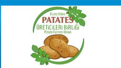 Photo of Patates Üreticileri Birliği Tarım Bakanlığı'nı eleştirdi