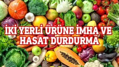 Photo of Haftalık gıda analiz sonuçları açıklandı