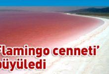 Photo of Tuz Gölü pembe renge büründü