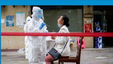 Photo of DSÖ: Çin'deki virüs yeni değil, bilinen bir domuz gribi türü