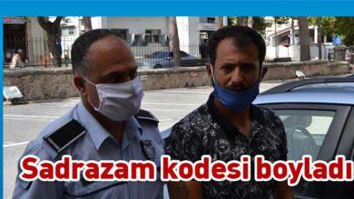 Photo of Ormanı yakmak isteyen Yusuf Sadrazam cezaevine gönderildi